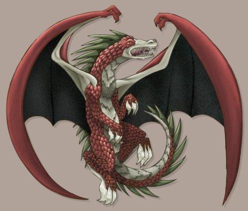 dragoncolor